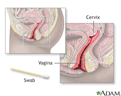 Pap smears age to start dating